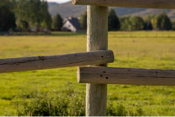Richtig teilen: Was bei einer Grundstücksteilung zu beachten ist